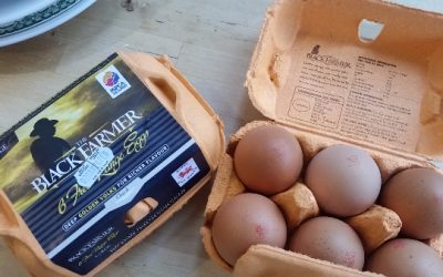 Black Farmer Eggs – review