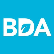 Childhood Obesity Strategy – the BDA response